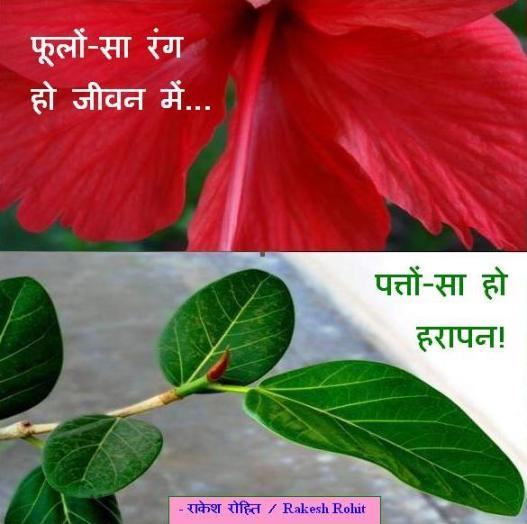 फूलों-सा रंग हो जीवन में... पत्तों-सा हो हरापन!  -  राकेश रोहित